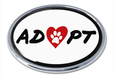 Adopt Chrome Emblem