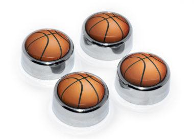 Basketball License Plate Frame Screws