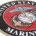 Premium Marine Seal 3D Decal image 5