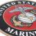 Premium Marine Seal 3D Decal image 5
